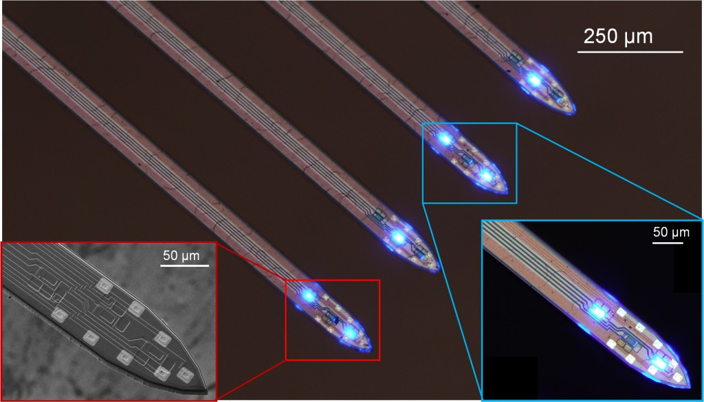 The four shanks of an optoelectrode with its tips are shown (26.5), with the LEDs illuminating. The inset (left) shows a SEM view of a tip.