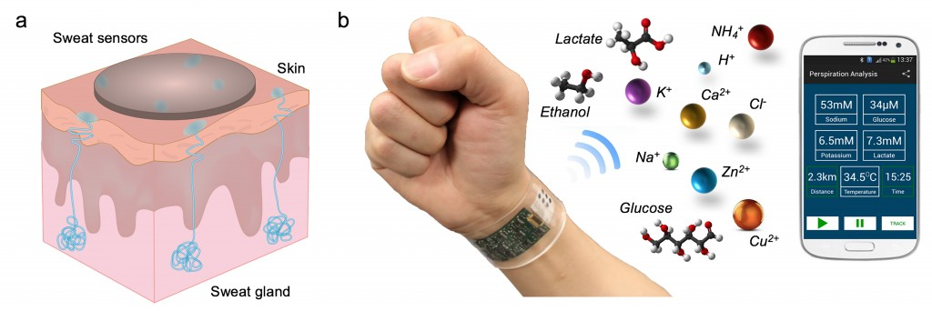 Schematics and example of wearable sweat sensor from paper 6.6